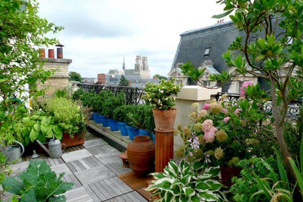 Bonus verde 2018: una nuova detrazione per giardini e terrazzi